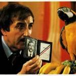 In lotta con il pappagallo