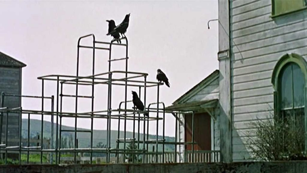 """""""Gli Uccelli"""": i corvi pronti ad attaccare"""