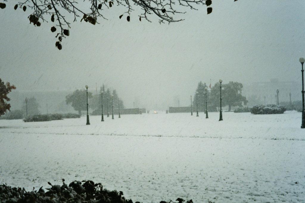 Neve e solitudine: paradigma della vita di Emily Dickinson